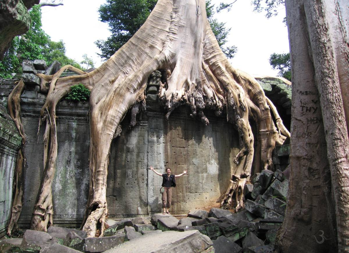 nature takes everything back (Ta Phrom in Cambodia)